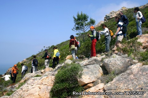 Image #5 of 26 - Portugal Hike: Sintra - Cascais Heritage & Coast