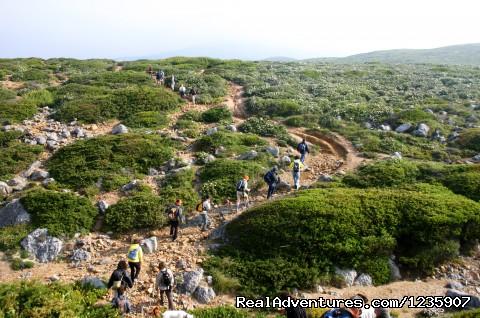 Image #10 of 26 - Portugal Hike: Sintra - Cascais Heritage & Coast