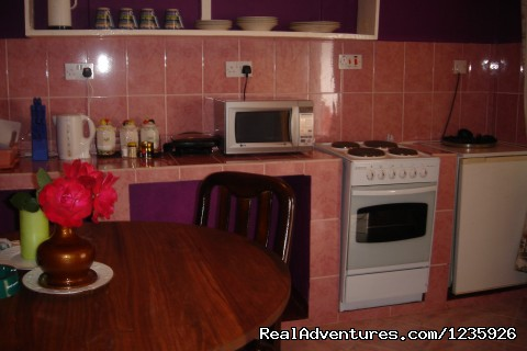 Apartments' Kitche (#7 of 9) - Kundayo Serviced Apartments Lodge