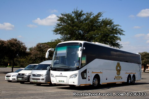 Tour Operator/Pilanesberg National Park (Sun city)
