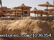 - Egypt tours package