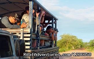 Image #4 of 26 - Pantanal- Pousada Santa Clara-MS