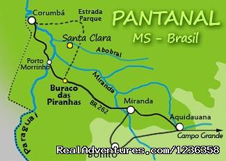 Pantanal- Pousada Santa Clara-MS