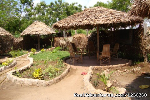Fantasy Resort Mtwapa: Private Garden