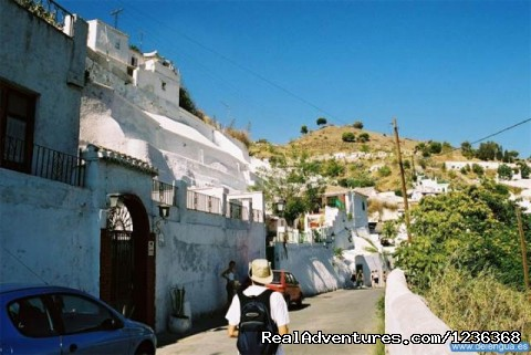 Excursion (#5 of 8) - Escuela Delengua