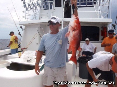 Orange beach Snapper fishing | Image #5/7 | Deep sea fishing trips from 4 hours to 3 days