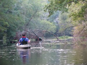 Kayak Fishing & Eco Tours in North Florida Jacksonville, Florida Kayaking & Canoeing