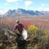 Moose hunting in September colors
