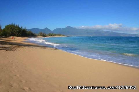 Maui's Villa Pacifica: Baldwin Beach