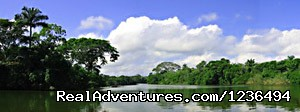 Sittee River for snook and tarpons (#5 of 18) - Hopkins Getaway Inland Tours