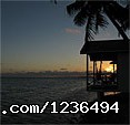 Beachfront Location (#16 of 18) - Hopkins Getaway Inland Tours