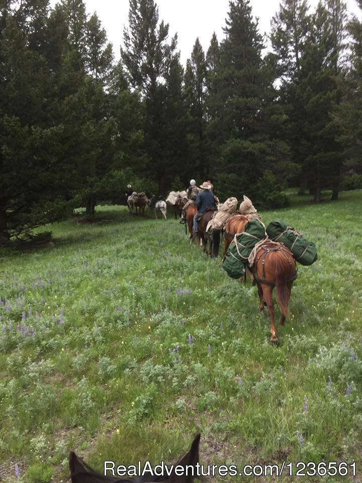 Guide School Students on a trail ride | Image #2/7 | Elm Outfitters & Guides Training Program
