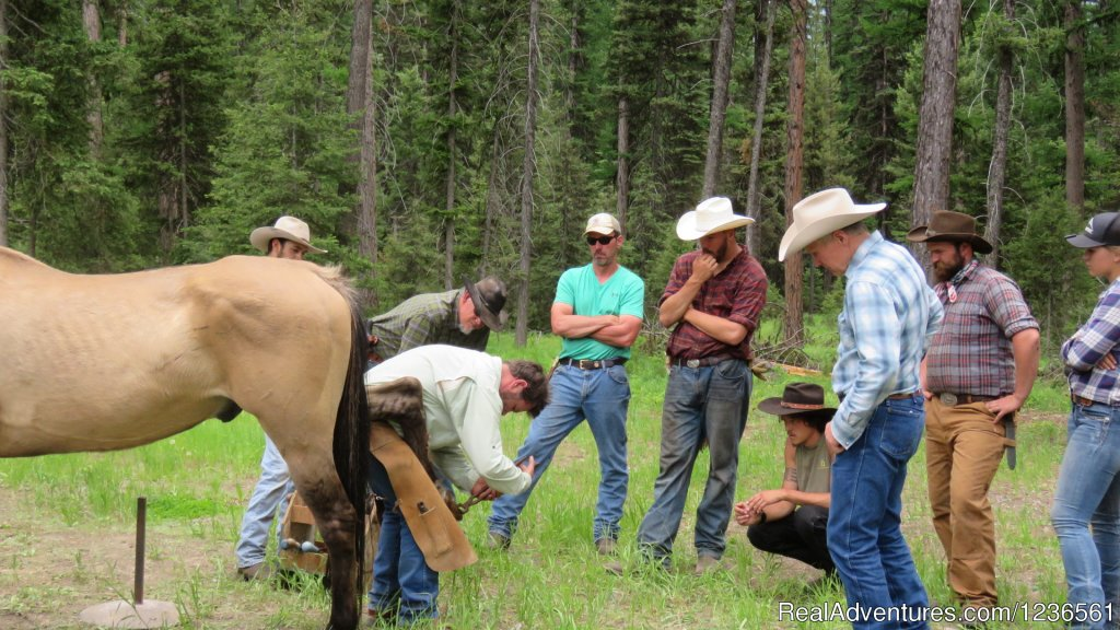 Learning to shoe | Image #3/7 | Elm Outfitters & Guides Training Program
