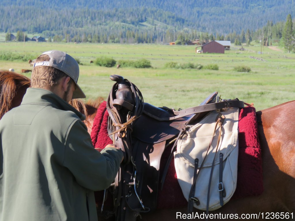 Saddle and unsaddling a horse | Image #6/7 | Elm Outfitters & Guides Training Program