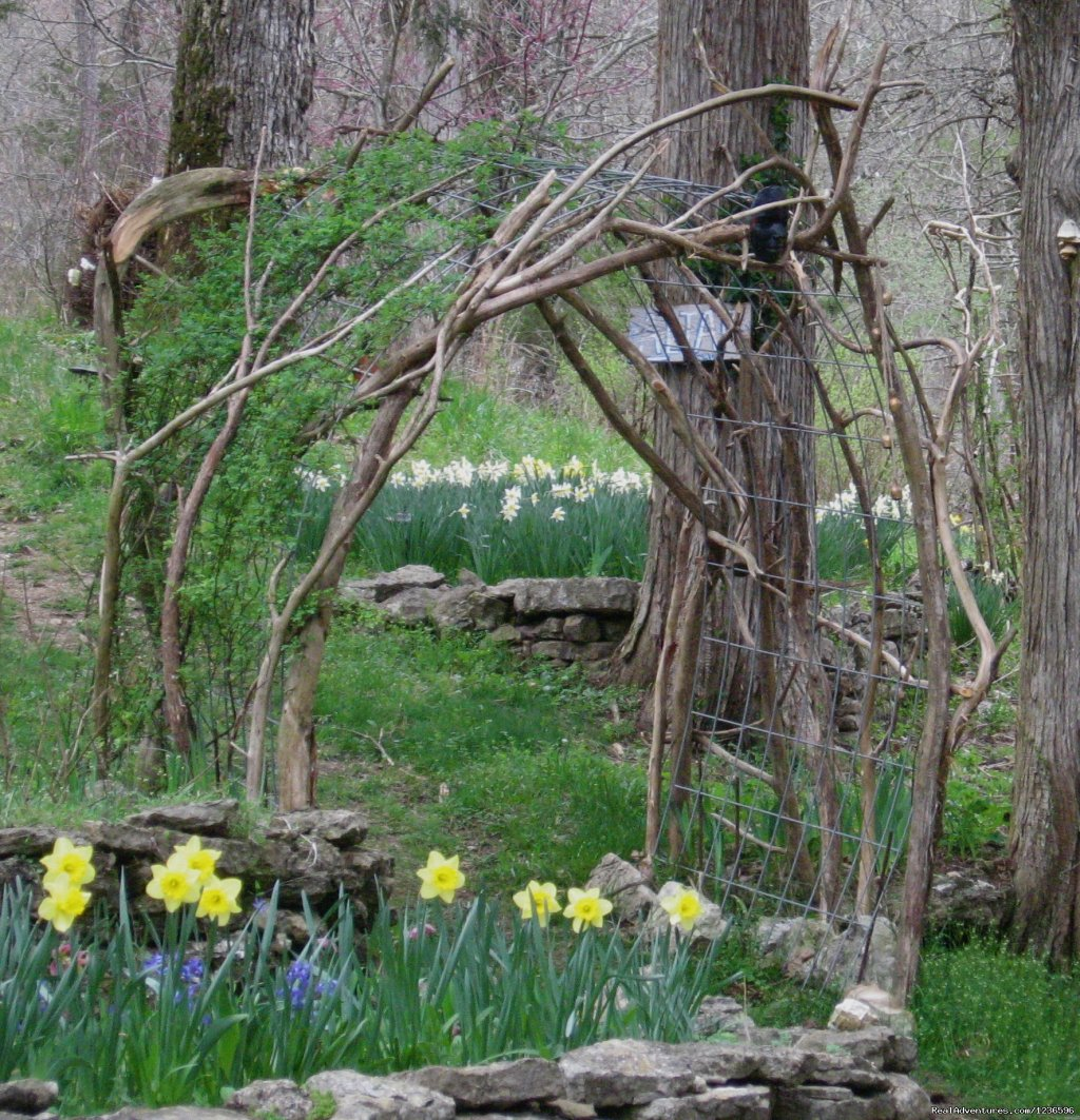 Daffodil Arbor | Image #13/25 | Renew & Relax at Fire Om Earth Retreat Center
