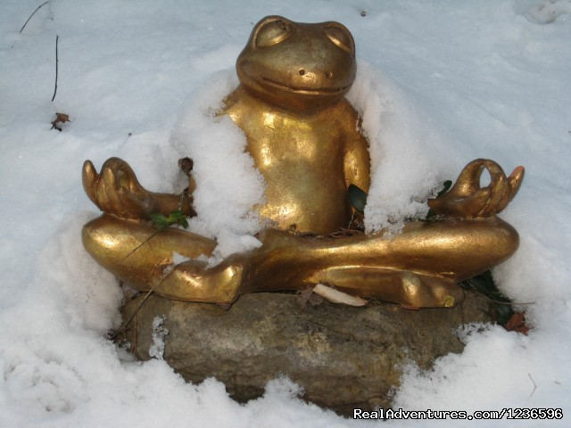 Om Frog - Renew & Relax at Fire Om Earth Retreat Center