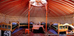 Bl guest house Khatgal, Mongolia Bed & Breakfasts