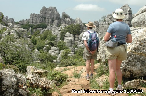 Premier Guided Walking & Cultural Holidays