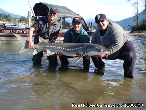 Did we say sturgeon? - Angling Adventures With Prestige Sportfishing