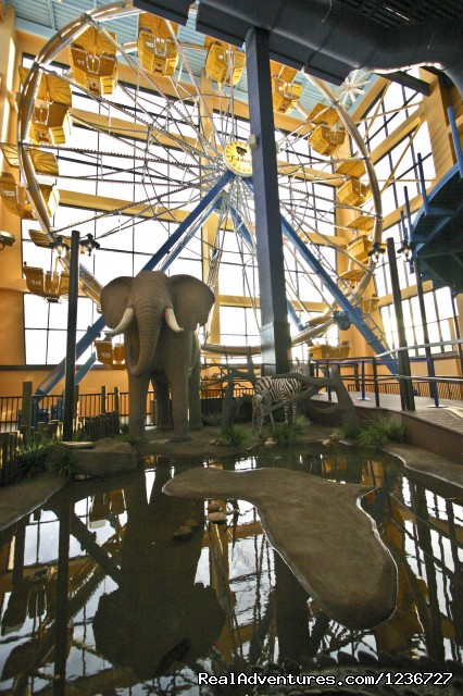 Big Wheel - Kalahari Indoor Theme Park