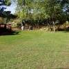 Huge Yard For Family Fun And Campfires