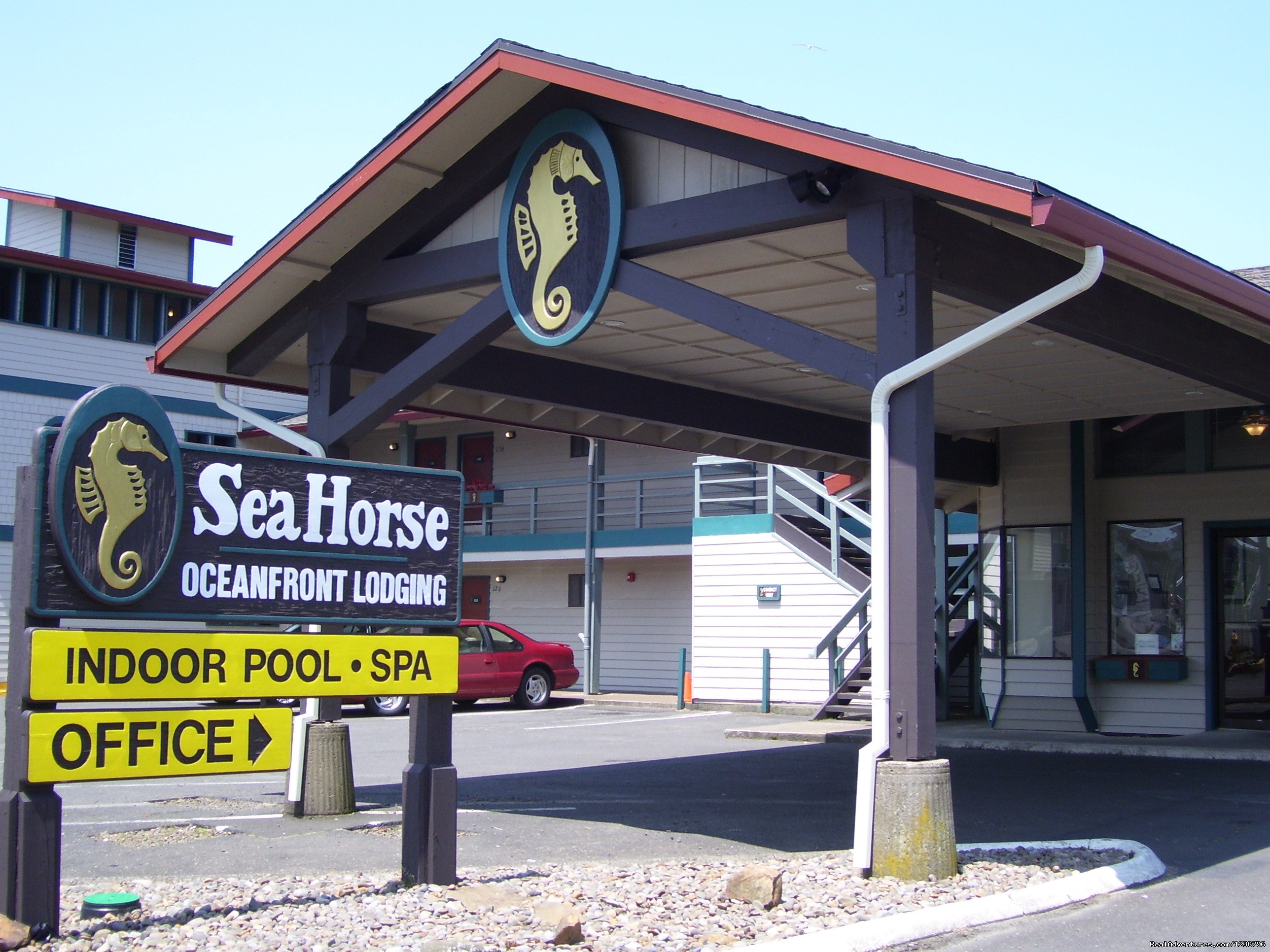 Welcome to Sea Horse