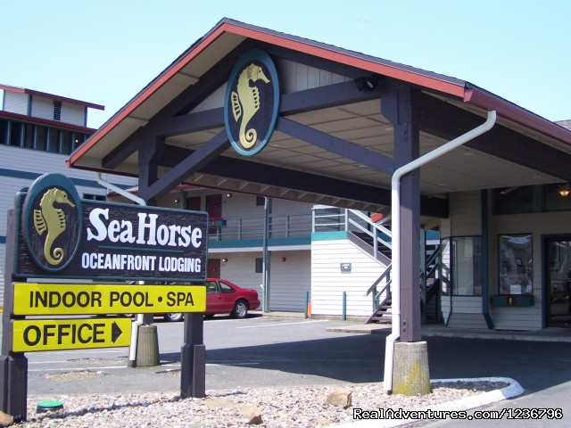 Welcome to Sea Horse - Sea Horse Oceanfront Lodging