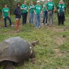 Tortoise overlooking our group