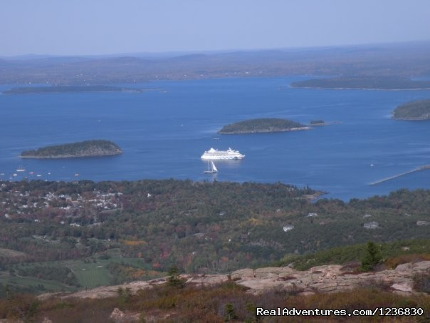 Cruise Ship - Acadia & Island Tours- Oli's Trolley