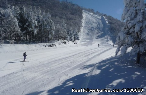 - Skiing in Armenia