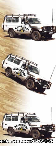 Hamerkop Safaris and Car Hire