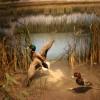 International Wildlife Museum Bringing Back Wildlife Wetland Exhibit