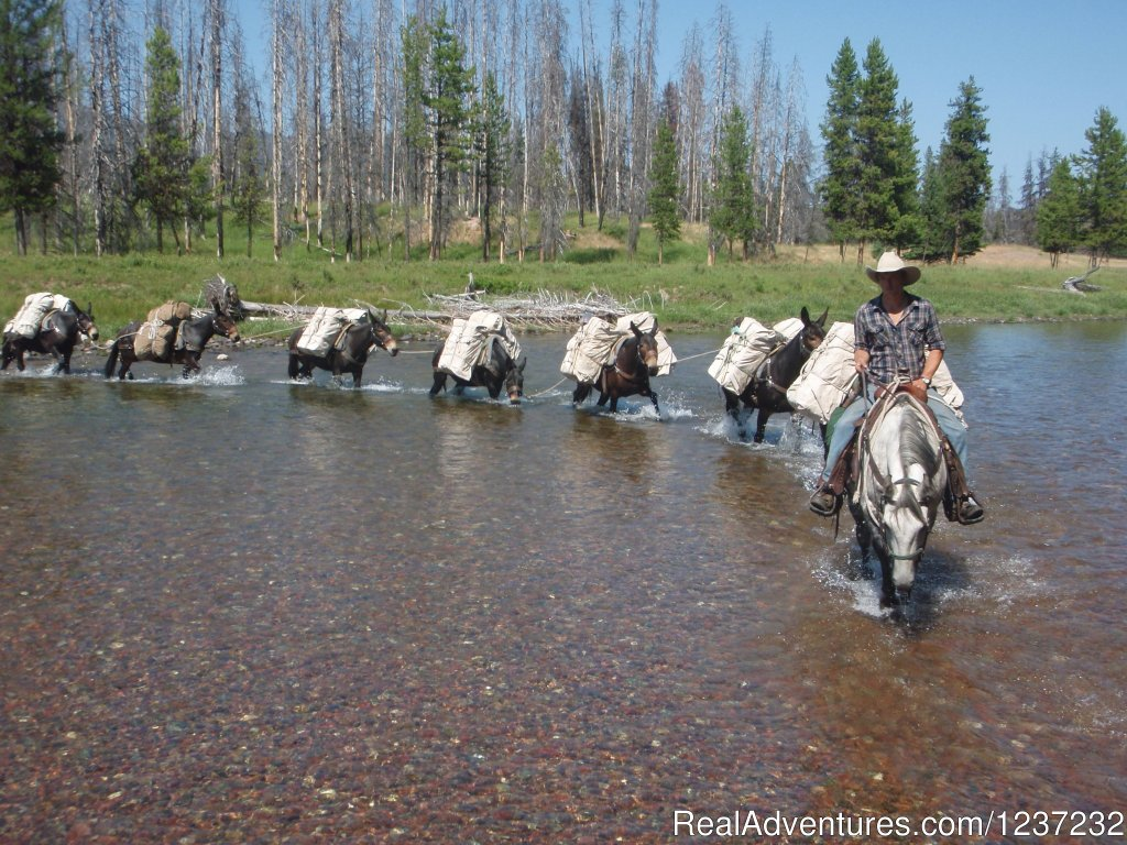 Wilderness Pack String | Image #1/20 | Seeley Lake, Montana  | Horseback Riding | Horseback Riding Adventures
