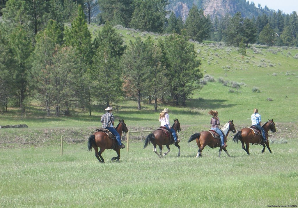 Fast-paced riding opportunities | Image #5/20 | Horseback Riding Adventures