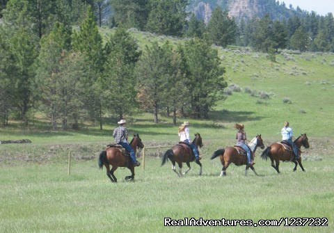 Fast-paced riding opportunities (#4 of 25) - Horseback Riding Adventures