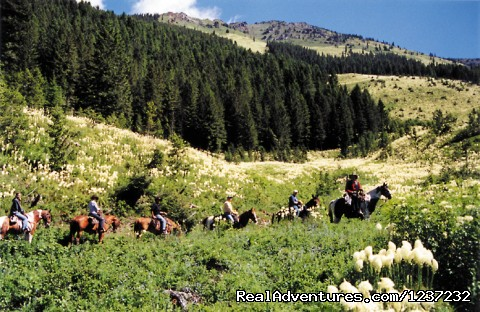 Pyramid Pass scenic trail ride - Horseback Riding Adventures