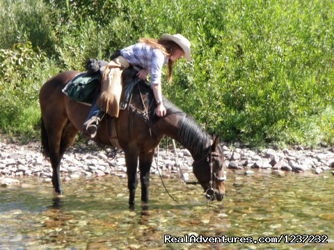 Horseback Riding Adventures River crossing