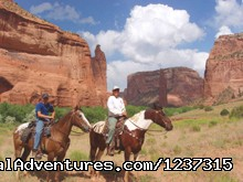 Canyon De Chelly - Responsive Horses at Arizona Horseback Experience
