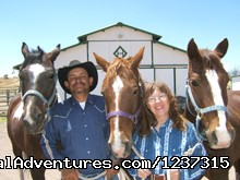 Image #5 of 9 - Responsive Horses at Arizona Horseback Experience