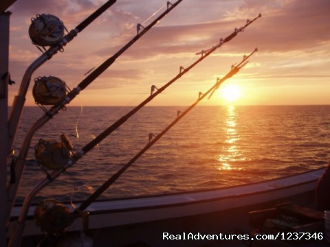 Tuna Rods - Paradise On The Sea Adventures