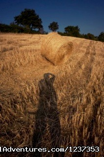 Image #3 of 8 - Amore Toscana - Photography Workshops in Tuscany