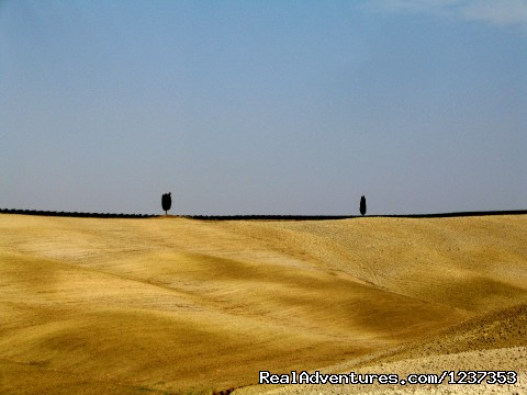Image #5 of 8 - Amore Toscana - Photography Workshops in Tuscany