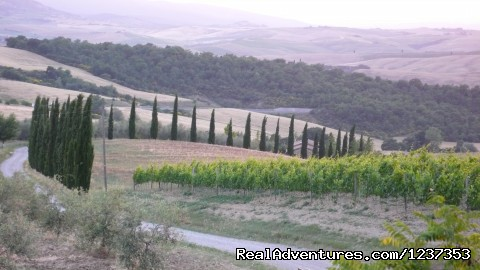Image #7 of 8 - Amore Toscana - Photography Workshops in Tuscany