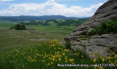 Stone Horse Expeditions & Travel, Terelj National Park - Mongolia Horseback Riding Tours  with Stone Horse