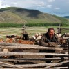 Stone Horse Expeditions & Travel, Homestay with Herders