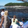 Island Quest Marine offers Educational Adventures