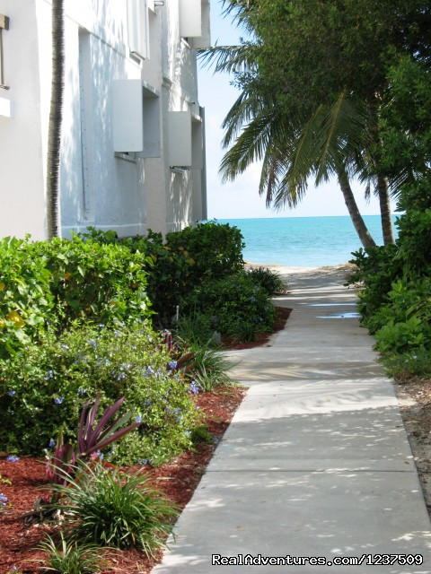 Walkway To Beach - Royal Plum Club