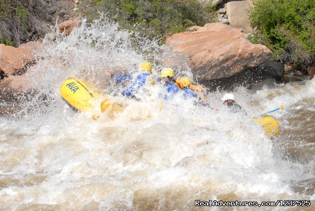 AVA Rafting and Mountaintop Zipline Tours Rafting Trips Buena Vista, Colorado