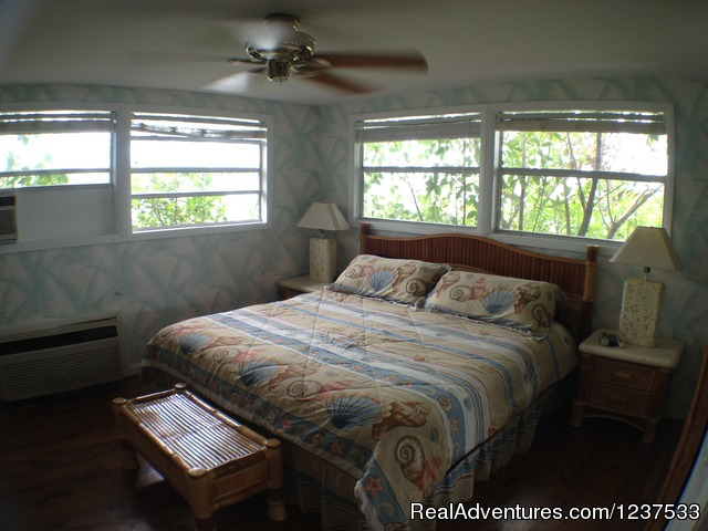 King Bed in Master Bedroom - Romantic Private Island Home - weekly rental