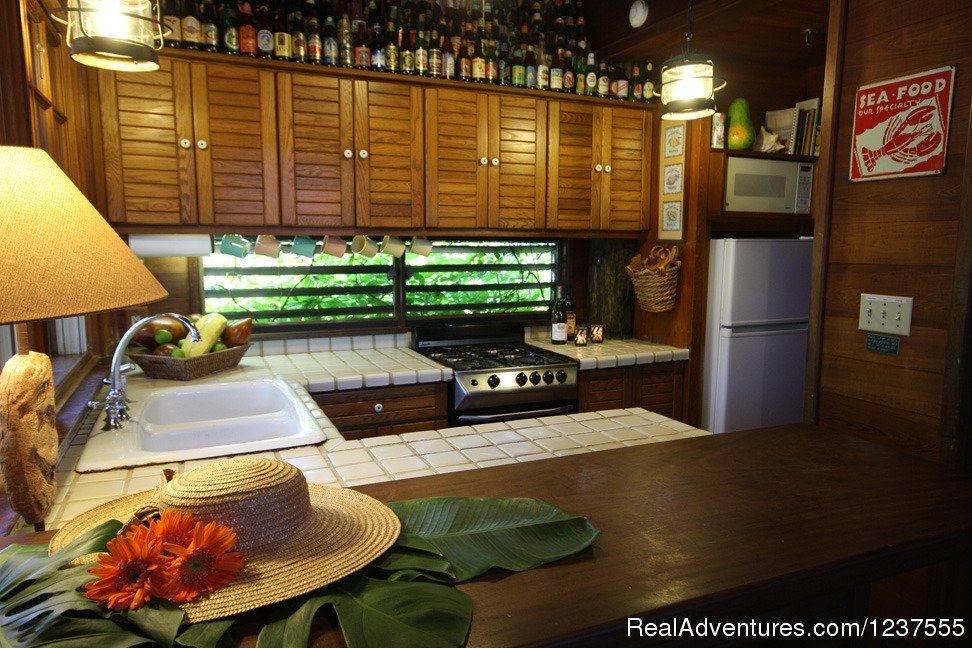 Seabird's galley is well equipped for preparing Island meals | Image #9/24 | Seabird Key, Private Island,  Sandy beach & boat